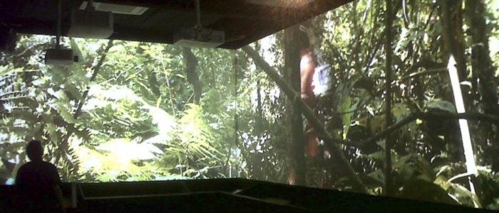pantalla proyector